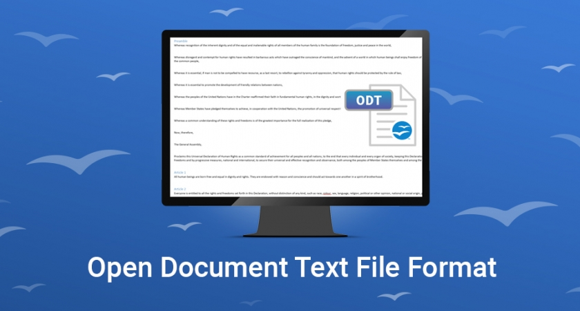 Open Document Text File Format